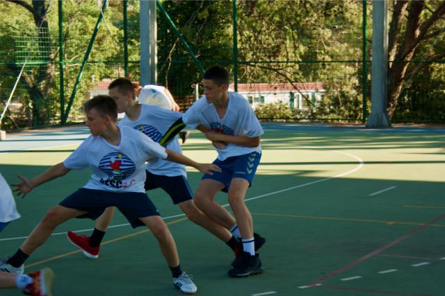 handball articles